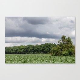 Dutch skies Canvas Print