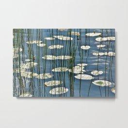 Yellow waterlily Metal Print