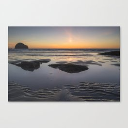 Worth Waiting For Canvas Print