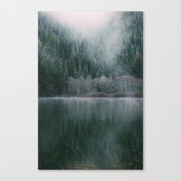 Descending Fog Canvas Print