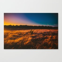 Rainbow Sky Canvas Print