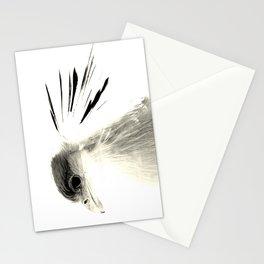 Secretary Bird on White Stationery Cards