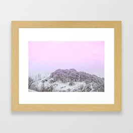 Pink Light on the trees in the forest Framed Art Print