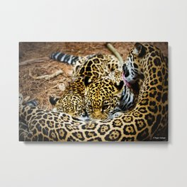 Momma's Boy Metal Print