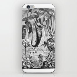 Carnivorous Plants Vintage Illustration iPhone Skin