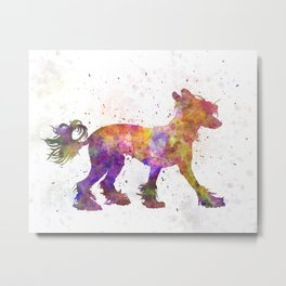 Chinese crested dog 01 in watercolor Metal Print