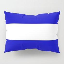 EMS: The Thin White Line Pillow Sham