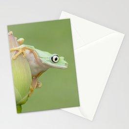 Lemur Frog on Lotus Bud Stationery Cards