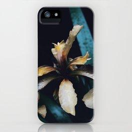 Monochrome Iris iPhone Case