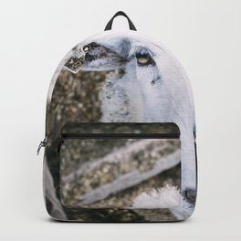 Hello There Backpack