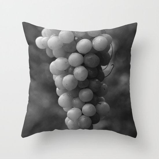 Harvest time - B&W 8508 Throw Pillow