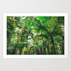 Tropical Canopy Art Print