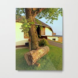 Tree trunk bench on a summer evening | landscape evening Metal Print