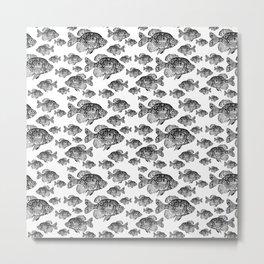 Crappie print Metal Print