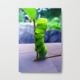 Stretch Metal Print