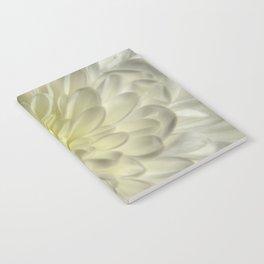White Chrysanthemum Notebook
