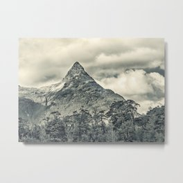 Patagonia Forest Landscape, Aysen, Chile Metal Print
