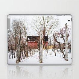 Hibernating Vineyard Laptop & iPad Skin