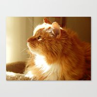 tigger Canvas Prints featuring Tigger sunshine by ACamp