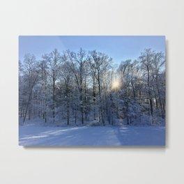 Winter Landscaping Metal Print