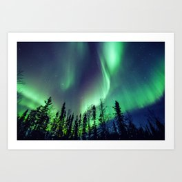 Northern Lights in Yellowknife Art Print
