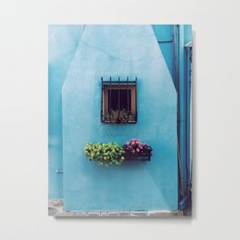 WINDOW WITH FRAME ABOVE GREEN AND PINK PETALED FLOWER ON FLOATING SHELF Metal Print