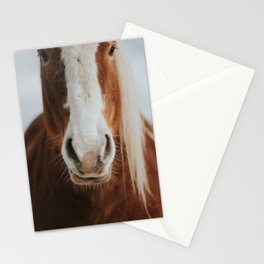 Horse in the wild Stationery Cards