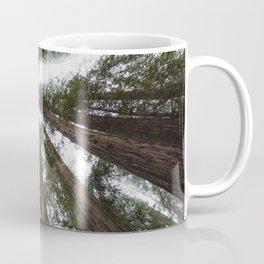 Redwood Portal - nature photography Coffee Mug