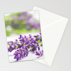 Lavender herb still life Stationery Cards
