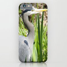 Blue Heron iPhone 6s Slim Case