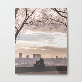 Peace and Quiet on a Winter Day in Edmonton Metal Print