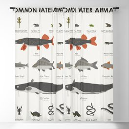 Common Water Animals Blackout Curtain