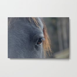 Those lashes pt 2 Metal Print