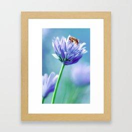 Hoverfly 48 Framed Art Print