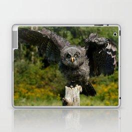 Baby Great Gray Owl Laptop & iPad Skin