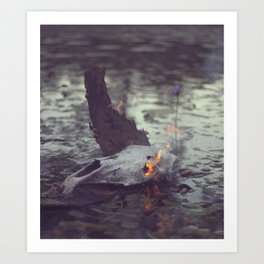 This Pond Art Print