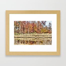 Fall Color II Framed Art Print
