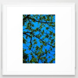 blue and green Framed Art Print