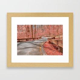 Opalescent Forest Road Framed Art Print