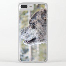 Albert Clear iPhone Case