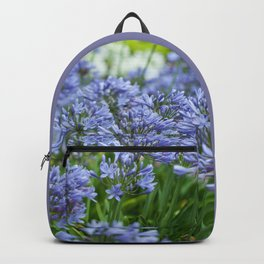 Field of Agapanthus Backpack