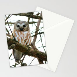 Bright eyed and bushy tailed Stationery Cards