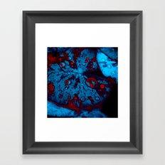 lily pad XII Framed Art Print