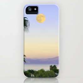 Palms on Full Moon iPhone Case