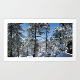 Winter in March Art Print