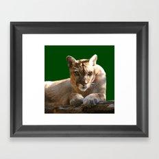 Intensity Framed Art Print