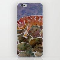 lizard iPhone & iPod Skins featuring lizard by rysunki-malunki