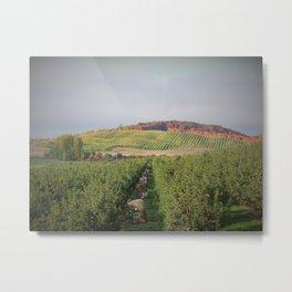 Apple Orchard Leelanau County, Michigan Metal Print