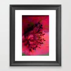 Summer Love in Bloom Framed Art Print