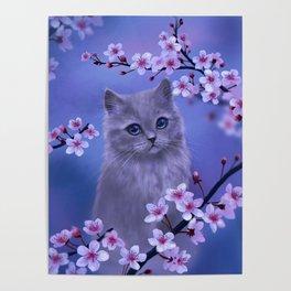 Spring kitten Poster